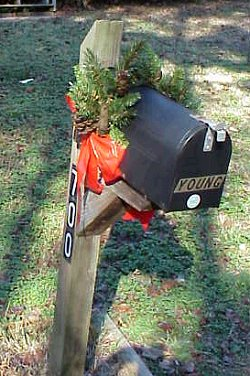 Mailbox trimmed in pine and bow